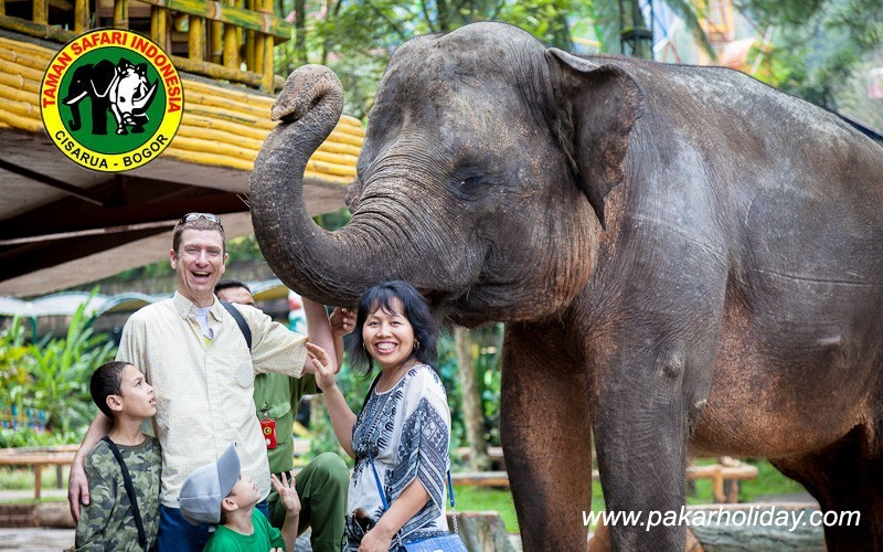 Paket Wisata Taman Safari Murah