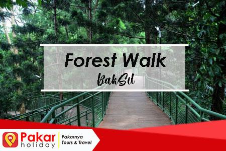 forest walk tempat joging asyik di bandung